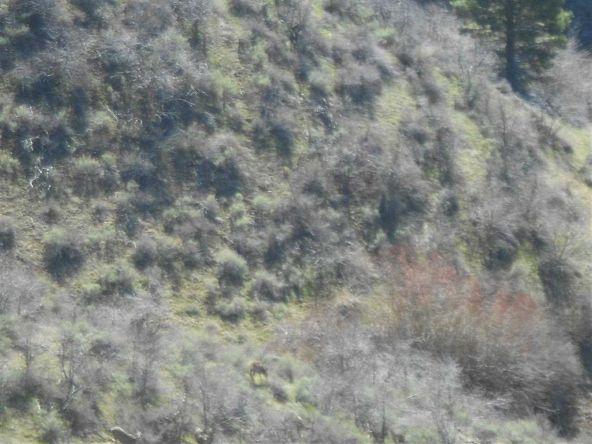 Tract 4 Robie Ridge, Boise, ID 83716 Photo 10