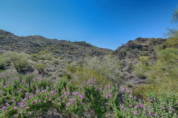 37403 N. Sunset Trail, Cave Creek, AZ 85331 Photo 37