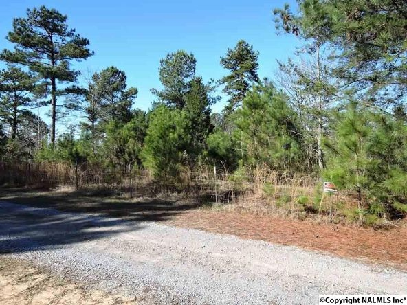 2a County Rd. 360, Bremen, AL 35033 Photo 1