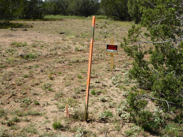 350 No Name, Ash Fork, AZ 86320 Photo 25