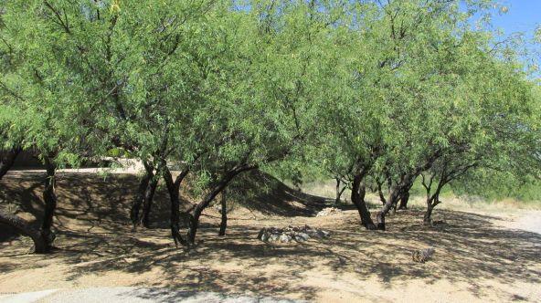 222 E. Camino Vista del Cielo, Nogales, AZ 85621 Photo 24