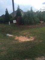 Home for sale: Lot B7 Stone Creek Lb7 Ct., Byron, GA 31008