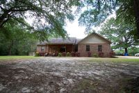 Home for sale: 445 County Rd. 219, Elba, AL 36323