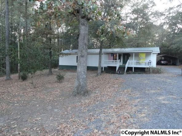 211 Dawson Rd., Fyffe, AL 35971 Photo 3