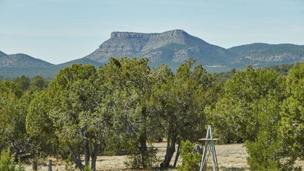 37750 W. Beau Hunter, Seligman, AZ 86337 Photo 18