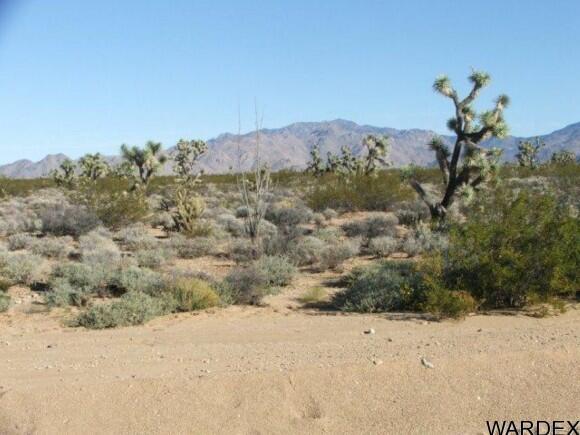 3529-C Arroyo Rd., Yucca, AZ 86438 Photo 5
