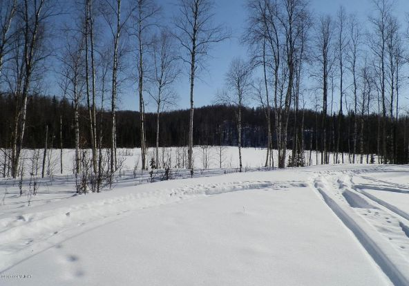 24810 W. Long Lake Rd., Willow, AK 99688 Photo 17
