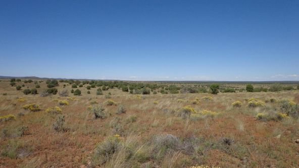 645 Westwood Ranch Lot 645, Seligman, AZ 86337 Photo 9