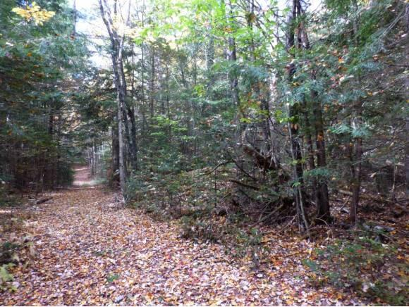 Lot #6 Woodland Dr., North Troy, VT 05859 Photo 4