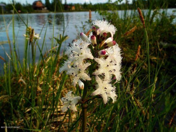 13752 W. Airigin Dr., Big Lake, AK 99652 Photo 16