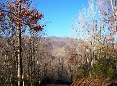 Hwy. 64 East, Hayesville, NC 28904 Photo 22