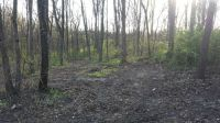 Home for sale: Lot 13 & 14 Woodland Dr., Sherrard, IL 61281