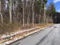 Home for sale: Tbd Oak St., Craigsville, VA 24430