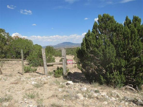 0 Pinon Park Trail, Sandia Park, NM 87047 Photo 17