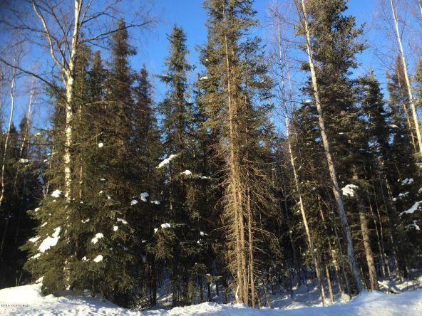 3790 N. Wyoming Dr., Wasilla, AK 99623 Photo 3