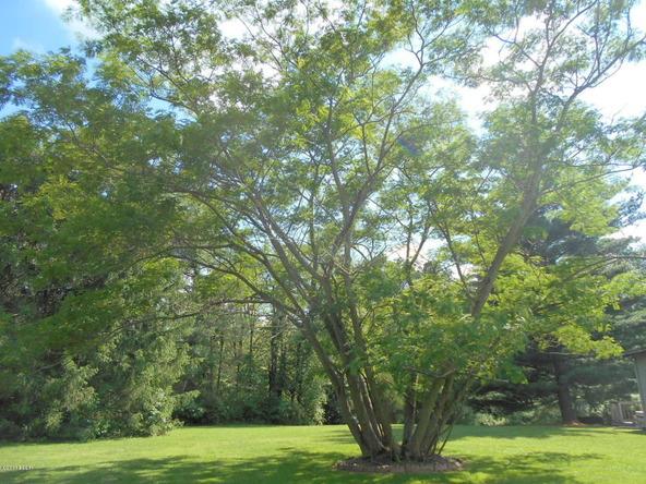 52 Hemlock, Flora, IL 62839 Photo 98