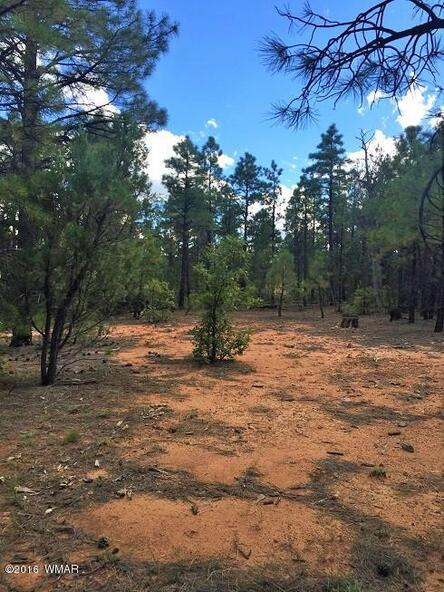 4281 W. Falling Leaf Rd., Show Low, AZ 85901 Photo 16