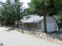 Home for sale: 22990 Vantage Point Dr., Twain Harte, CA 95383