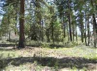 Home for sale: Lot 1 Meadow Dr., Idaho City, ID 83631