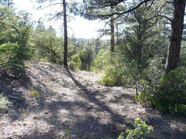 8b N. Chamberlain Trail, Young, AZ 85554 Photo 9