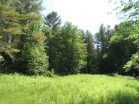 Home for sale: 00 Chapman Rd., Plymouth, VT 05056