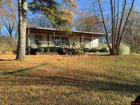Home for sale: 198 Mc 8064, Flippin, AR 72634