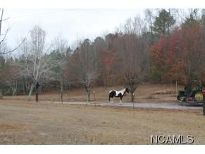 281 Way Back Ln., Hayden, AL 35079 Photo 16