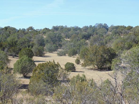 57154 N. Bridge Canyon Parkway, Seligman, AZ 86337 Photo 4
