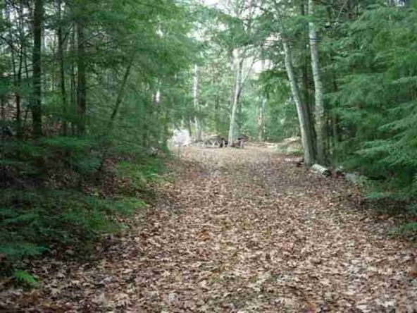 Lot #1 Pickerel Lake Rd., Gleason, WI 54435 Photo 1