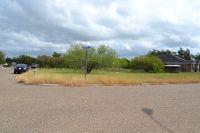 Home for sale: 230 Caramel Dr., Alamo, TX 78516
