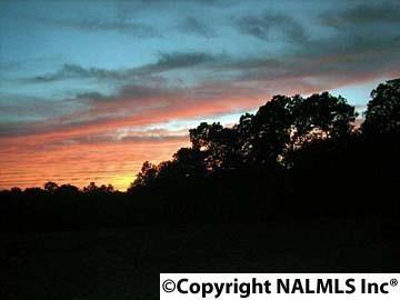 1172 County Rd. 639, Mentone, AL 35984 Photo 5