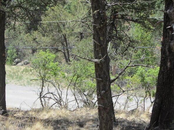 110 Chiracahua Ln., Ruidoso, NM 88345 Photo 21