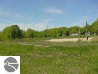 Home for sale: 1388 Michigan Avenue, Benzonia, MI 49616