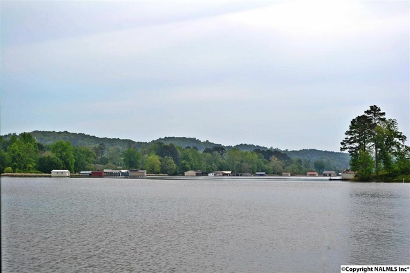 1 Lake Creek Dr., Guntersville, AL 35976 Photo 2
