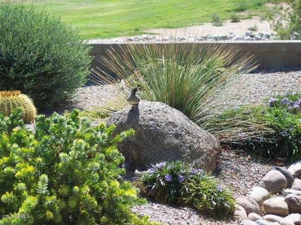 30083 N. Gecko Trail, San Tan Valley, AZ 85143 Photo 59