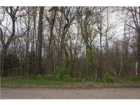 Home for sale: 39 Sanchez Trl, Malvern, OH 44644