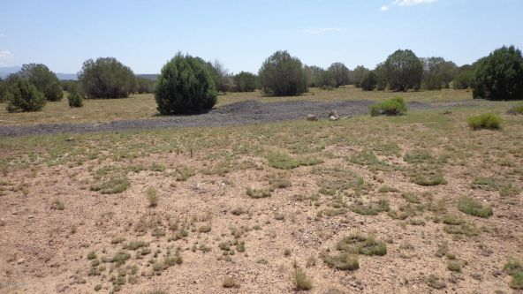 261 Juniperwood Ranch Lot 261, Ash Fork, AZ 86320 Photo 61