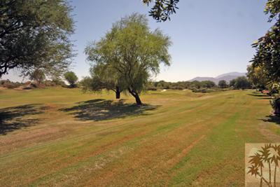 54914 Oak Tree, La Quinta, CA 92253 Photo 8
