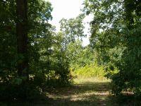 Home for sale: Lot 31 Woods Ln., Kingston, TN 37763