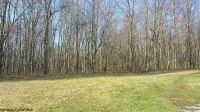Home for sale: 20 Acres Deberry Ln., Bruceton Mills, WV 26525