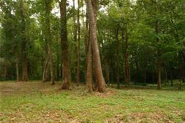 00 Tau Trail, Monticello, FL 32344 Photo 2
