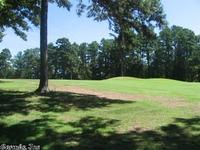 Home for sale: 115 Osage Point Dr., Fairfield Bay, AR 72088