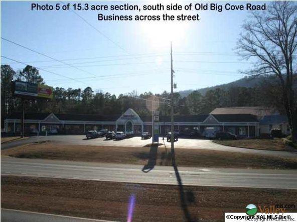 5703 U S. Hwy. 431, Brownsboro, AL 35741 Photo 8