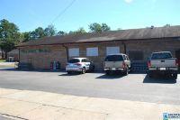 Home for sale: 42746 Hwy. 25, Vincent, AL 35178