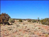 Home for sale: 3966 N. Cortez Rd., Snowflake, AZ 85937