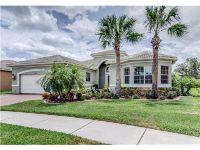 Home for sale: 16235 Diamond Bay Dr., Wimauma, FL 33598