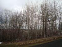Home for sale: Lot Buena Vista Dr., Fond Du Lac, WI 54937