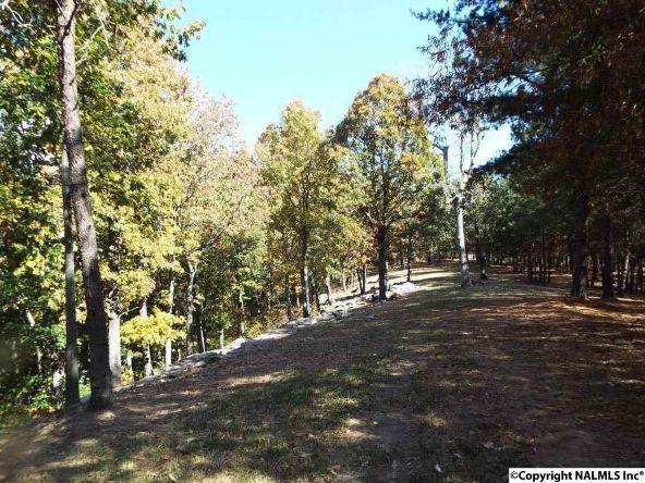 16 S. County Rd. 89, Mentone, AL 35984 Photo 4