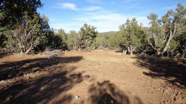 44201 N. Crazy Coyote Way, Seligman, AZ 86337 Photo 5