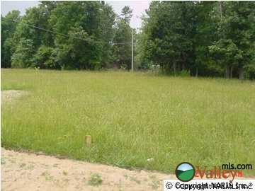 County Rd. 1009, Fort Payne, AL 35968 Photo 1